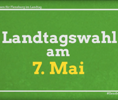Die Grünen – Rasmus Andresen – Landtagswahlen 2017